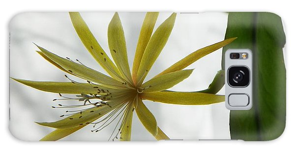Cactus Orchid Galaxy Case