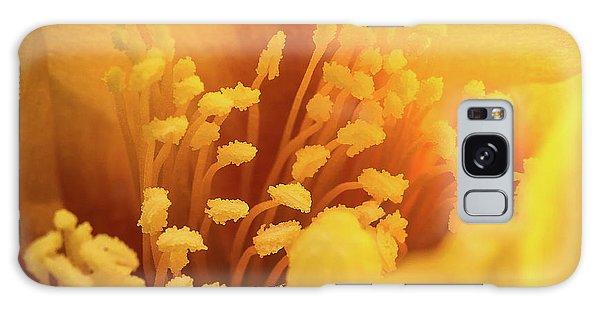 Cactus Pollen Galaxy Case