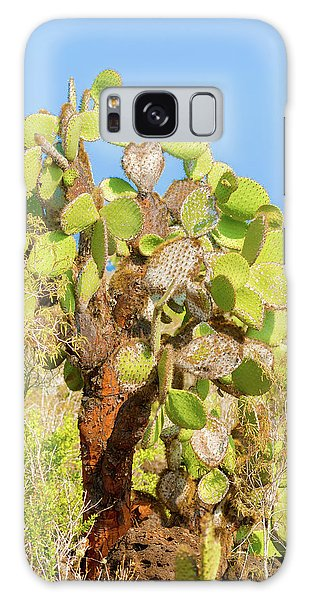 Cactus Trees In Galapagos Islands Galaxy Case by Marek Poplawski
