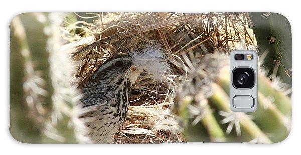 Cactus Wren Feather Galaxy Case