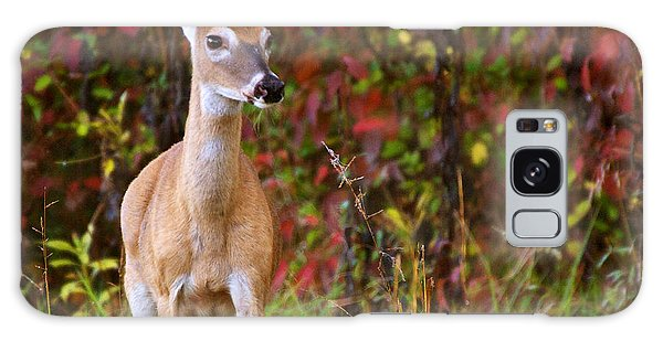 Cades Cove Doe Galaxy Case