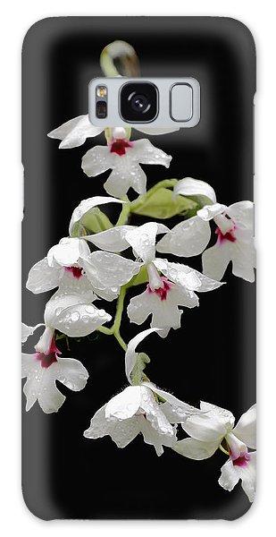 Calanthe Vestita Orchid Galaxy Case