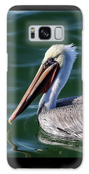 California Brown Pelican In Late Summer Galaxy Case