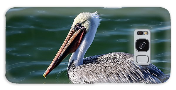 California Brown Pelican In Late Summer Galaxy Case