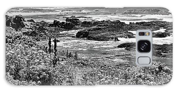 California Coast No. 9-2 Galaxy Case