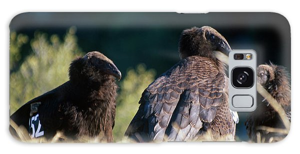 California Condors Galaxy Case by Soli Deo Gloria Wilderness And Wildlife Photography