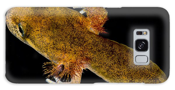California Giant Salamander Larva Galaxy Case