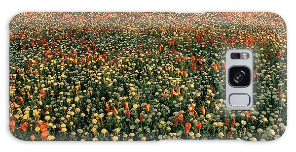 California Poppies At Dawn Lancaster California Galaxy Case