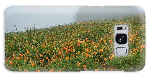 California Poppies On Volcan Mountain Galaxy Case