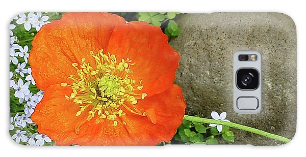 California Poppy Rock Garden Galaxy Case