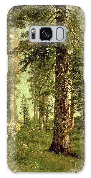 California Galaxy Case - California Redwoods by Albert Bierstadt