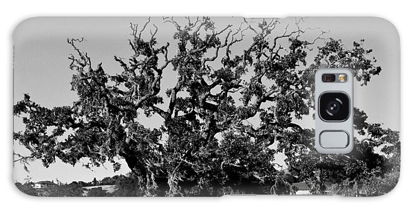 California Roadside Tree - Black And White Galaxy Case