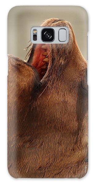 California Sea Lion Calling Out Galaxy Case by Max Allen