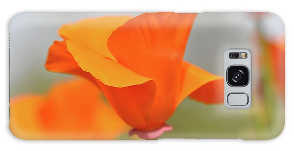 California State Poppy Macro Galaxy Case