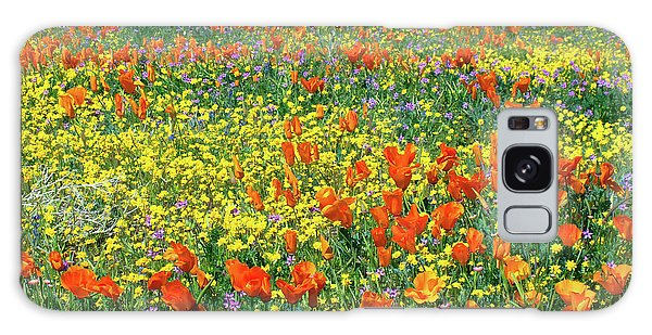 Galaxy Case featuring the photograph California Wildflower Super Bloom by Ram Vasudev