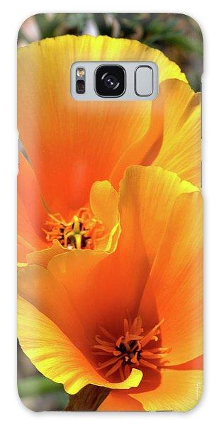 Californian Poppy Galaxy Case by Stephen Melia