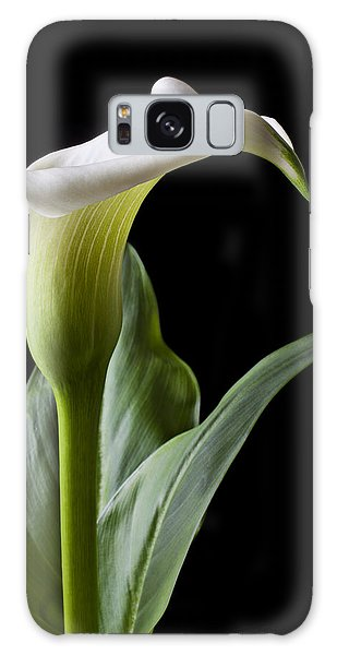 Lily Galaxy Case - Calla Lily With Drip by Garry Gay