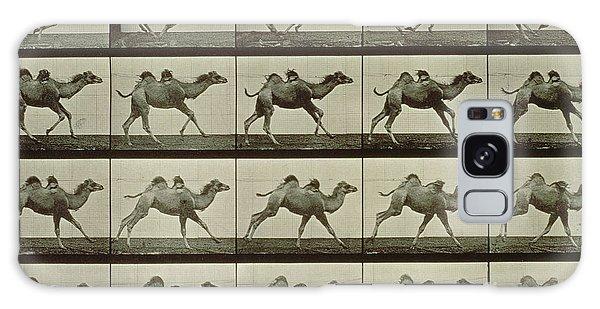 Desert Galaxy Case - Camel by Eadweard Muybridge
