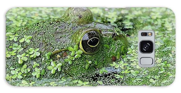 Camo Frog Galaxy Case by Ronda Ryan