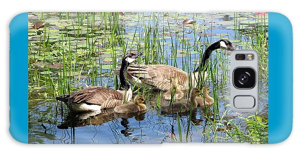 Canada Geese Family On Lily Pond Galaxy Case