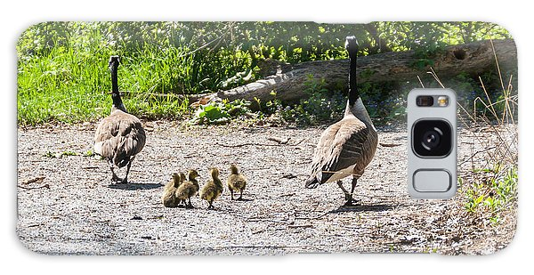 Canada Geese Family Walk Galaxy Case by Edward Peterson