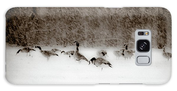 Canada Geese Feeding In Winter Galaxy Case