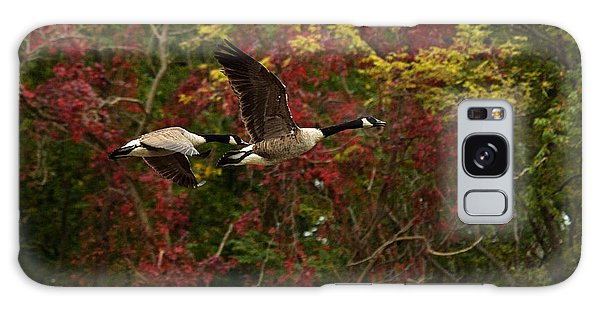Galaxy Case featuring the photograph Canada Geese In Autumn by Angel Cher