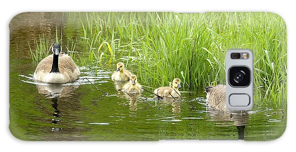 Gosling Galaxy Case - Canada Goose Family 2 by Sharon Talson