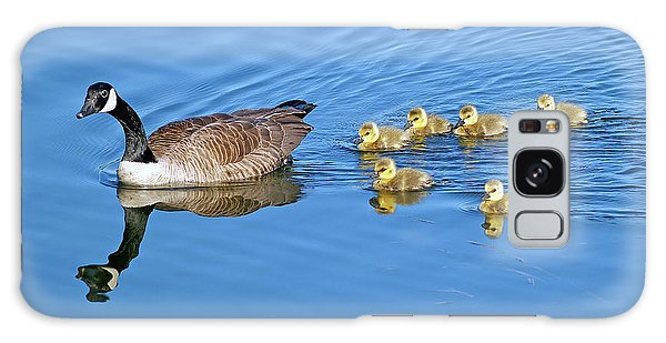 Gosling Galaxy Case - Canada Goose Family by Sharon Talson