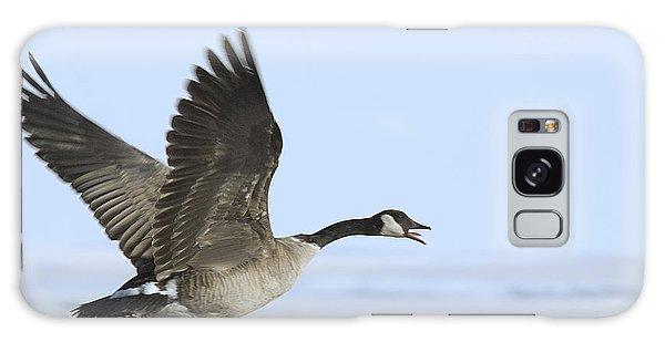 Canada Goose Galaxy Case