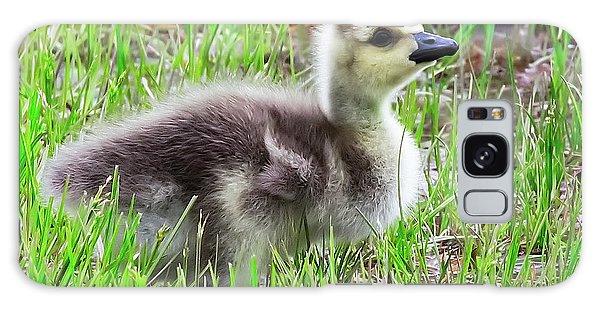 Canada Goose Gosling Galaxy Case