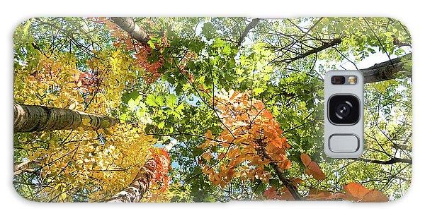 Canadian Foliage Galaxy Case