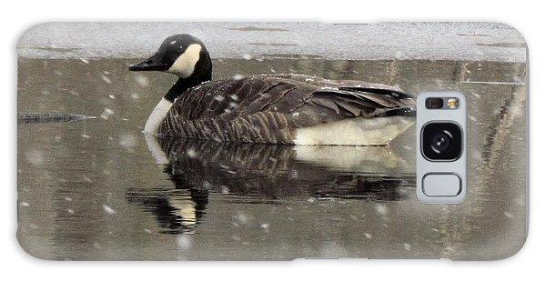Canadian Goose In Michigan Galaxy Case