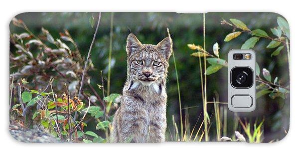 Canadian Lynx Galaxy Case