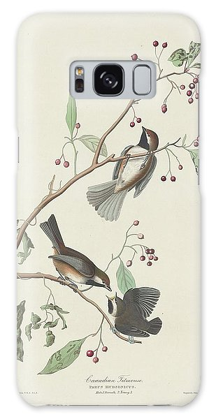 Titmouse Galaxy S8 Case - Canadian Titmouse by Dreyer Wildlife Print Collections