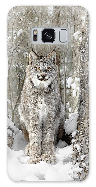 Canadian Wilderness Lynx Galaxy Case by Wes and Dotty Weber