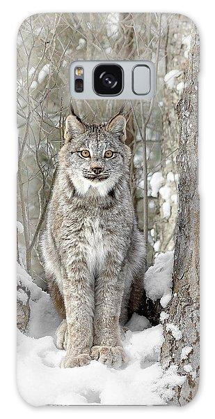 Canadian Wilderness Lynx Galaxy Case