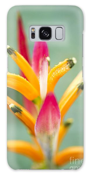 Galaxy Case featuring the photograph Candy Colours - Heliconia Tropical Flower by Sharon Mau