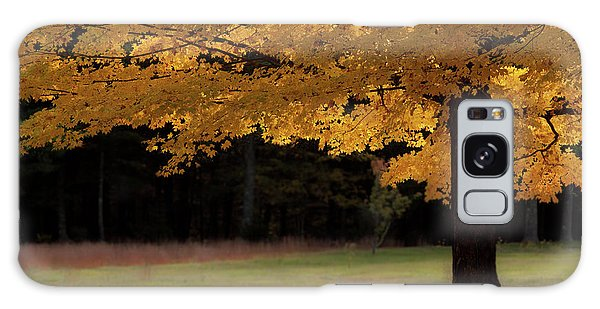 Canopy Of Autumn Gold Galaxy Case