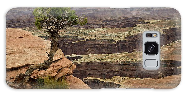 Galaxy Case featuring the photograph Canyonlands by Gary Lengyel