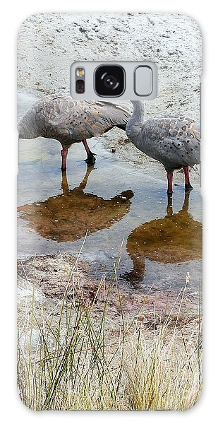 Cape Baron Geese On Maria Island 2 Galaxy Case by Lexa Harpell