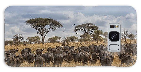 Cape Buffalo Herd Galaxy Case