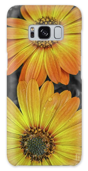 Cape Daisy's - Orange Galaxy Case