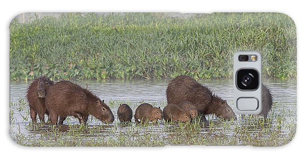 Capybara Galaxy Case by Wade Aiken