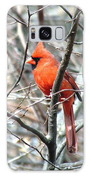 Cardinal 2 Galaxy Case