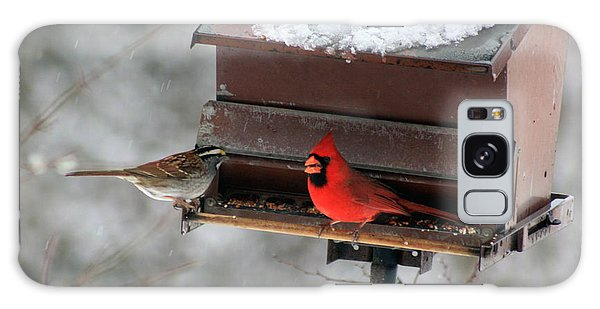 Cardinal And Sparrow At Feeder Galaxy Case by George Jones