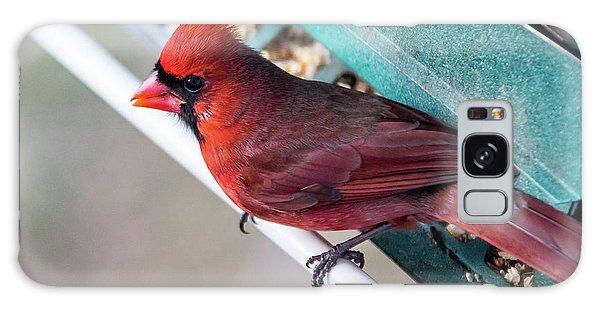 Cardinal Close Up Galaxy Case