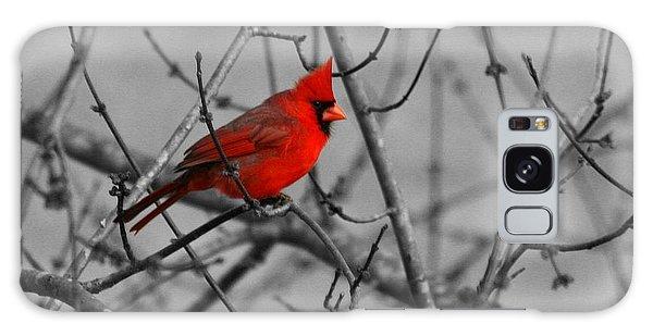 Cardinal Colorized Galaxy Case