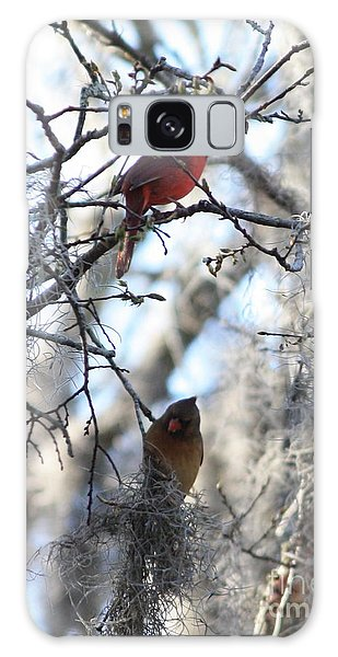 Cardinals In Mossy Tree Galaxy Case