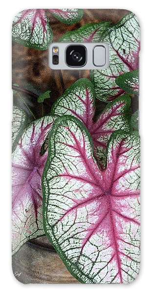 Galaxy Case - Carefree Caladiums by Suzanne Gaff